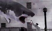 Sharknado: annunciato il sequel!