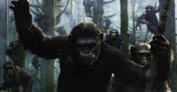 Dawn of the Planet of the Apes: la prima immagine del film