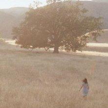 Medeas: una panoramica scena del film