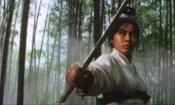 Martial Arts Movies: 10 titoli per (oltre) mezzo secolo di storia
