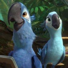 Rio 2: Blu e Jewel in una delle prime immagini del film