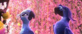 Rio 2: Blu e Jewel in una scena del film