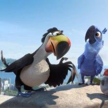 Rio 2: Blu parla con i nuovi amici in una delle prime immagini del film