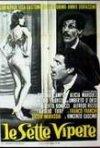 Le sette vipere: Il marito latino: la locandina del film