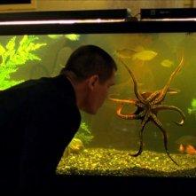 Old Boy: Josh Brolin osserva un acquario