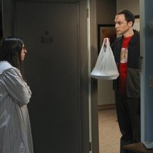 The Big Bang Theory: Jim Parsons e Mayim Bialik in una foto di scena dell'episodio The Workplace Proximity