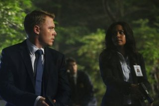 The Blacklist: Parminder Nagra e Diego Klattenhoff nell'episodio The Stewmaker