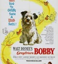Bobby il cucciolo di Edimburgo: la locandina del film