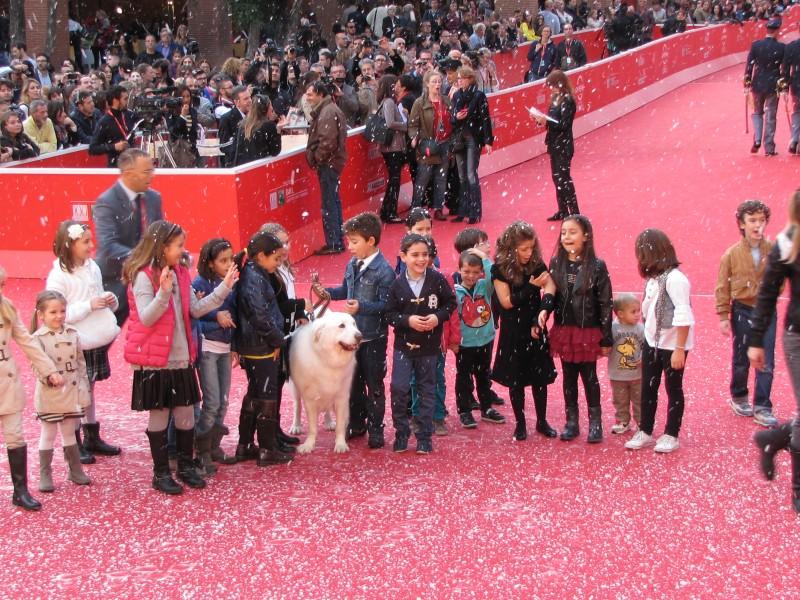 Belle Sebastien Un Tappeto Rosso Imbiancato Per Il Film Al Festival Di Roma 2013 291452