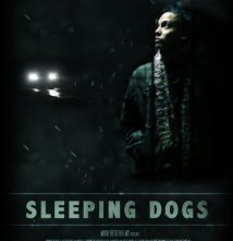 Sleeping Dogs: la locandina del film