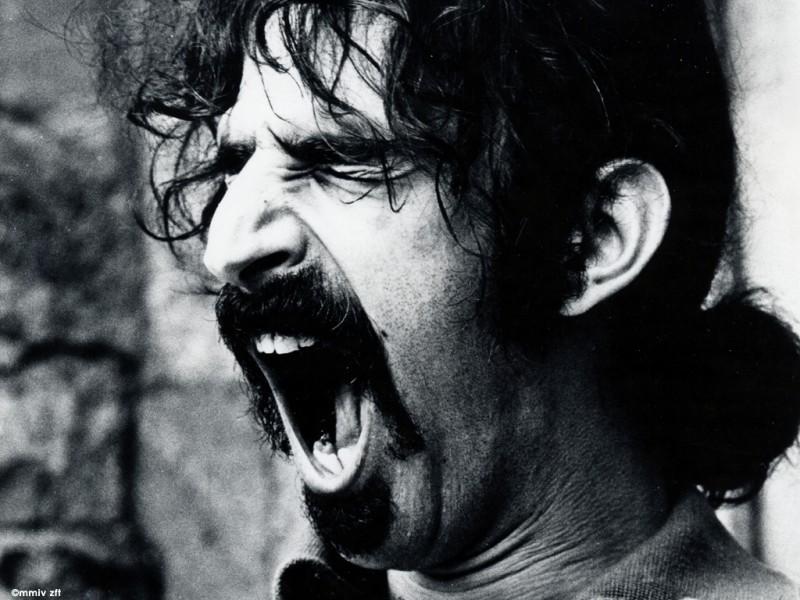 Un Primo Piano Di Frank Zappa 293573