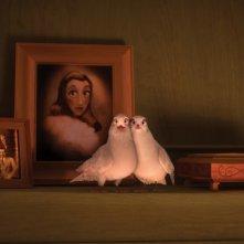 Il castello magico: due tenere colombe davanti ad alcune foto di famiglia