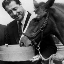 Don Ameche nel 1962