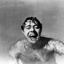 Una foto 'acquatica' di Don Ameche