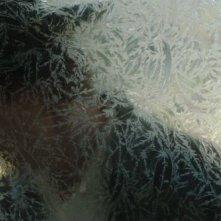 Dallas Buyers Club: Matthew McConaughey dietro un vetro in una suggestiva immagine del film