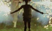 I migliori film del 2013: la top 20 di Francesca Fiorentino