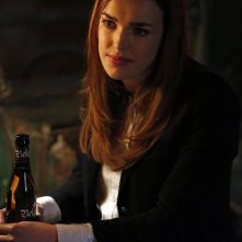 Agents of S.H.I.E.L.D.: Elizabeth Henstridge nell'episodio Seeds