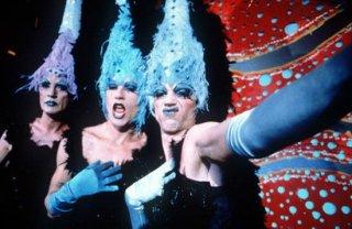 Terence Stamp, Hugo Weaving e Guy Pearce in Pricilla, la regina del deserto
