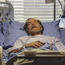 Grey's Anatomy: James Remar nell'episodio Take It Back