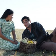 Jimmy P. (Psychotherapy of a Plains Indian) : Benicio Del Toro e Misty Upham in una scena del film