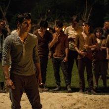 Maze Runner - Il labirinto: Dylan O'Brien in una scena del film
