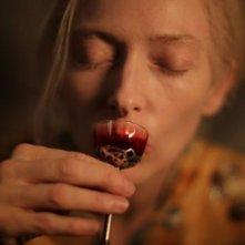 Only Lovers Left Alive: Tilda Swinton intenta a nutrirsi
