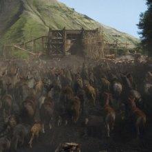 Noah: gli animali si dirigono sull'arca