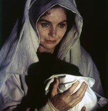 Una foto di Dorothy McGuire