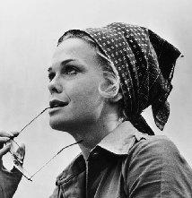 Una foto di Lynn Borden
