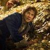 Lo Hobbit: la desolazione di Smaug dal 9 aprile in homevideo