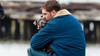 Chi è senza colpa: Tom Hardy e il suo cucciolo