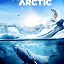 Wonders of the Arctic 3D: la locandina del film