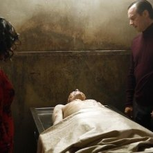 Agents of S.H.I.E.L.D.: Bill Paxton nell'episodio Providence