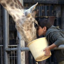 Giraffada: Ahmed Bayatra in una scena del film con la sua adorata giraffa