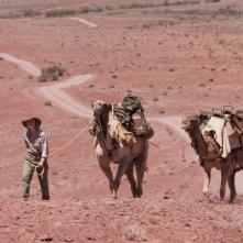 Tracks - Attraverso il deserto: Mia Wasikowska in un'immagine del film tratto da una storia vera