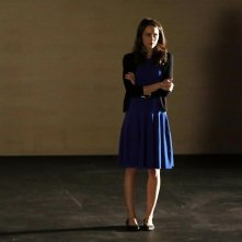 Agents of S.H.I.E.L.D.: Amy Acker in una scena dell'episodio The Only Light in the Darkness, prima stagione