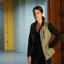 Agents of S.H.I.E.L.D.: Cobie Smulders in Nothing Personal, episodio della prima stagione