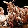 War Horse al cinema il 6 maggio