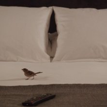 Bird People: una scena del film
