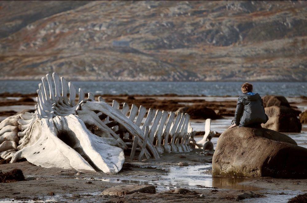Leviathan: una suggestiva scena del film