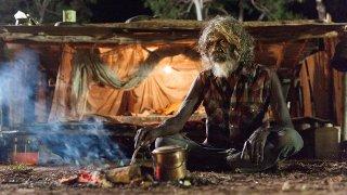 Charlie's Country: David Gulpilil nei panni di un anziano aborigeno in una scena del film