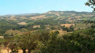 Resistenza naturale: un'immagine panoramica tratta dal documentario