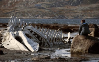 Recensione Leviathan (2014)
