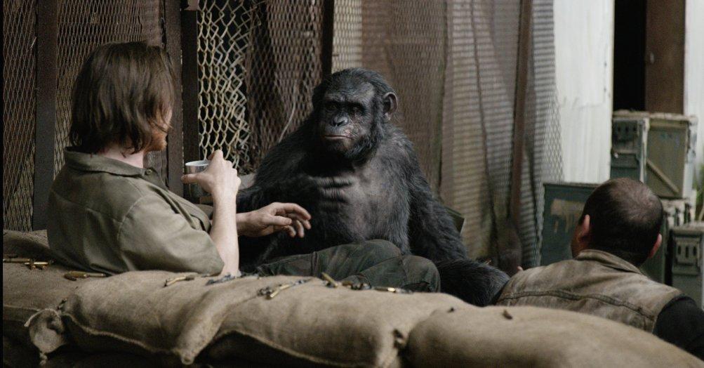 Apes Revolution - Il Pianeta delle Scimmie: una scena tratta dal film