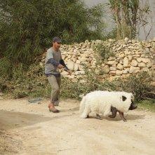 Un insolito naufrago nell'inquieto mare d'Oriente: Sasson Gabai con il maiale 'in pelliccia' in una scena