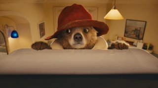 Paddington: una tenera immagine dell'orstetto Paddington