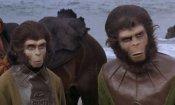 Il pianeta delle scimmie: umani vs. primati