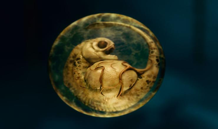 Piranha 3D - il feto di uno dei temibili mostri
