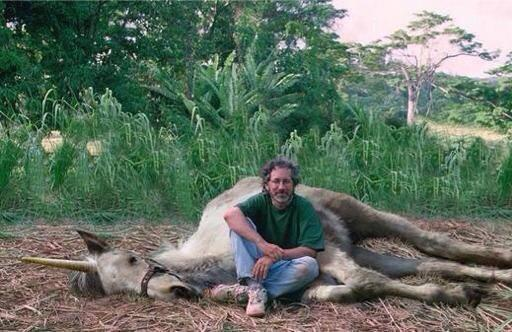 Spielberg il cacciatore - unicorno