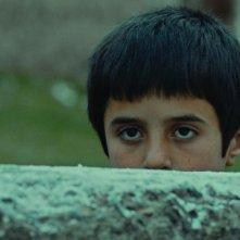 Sivas: Doğan İzci nei panni del piccolo Aslan in una scena del film